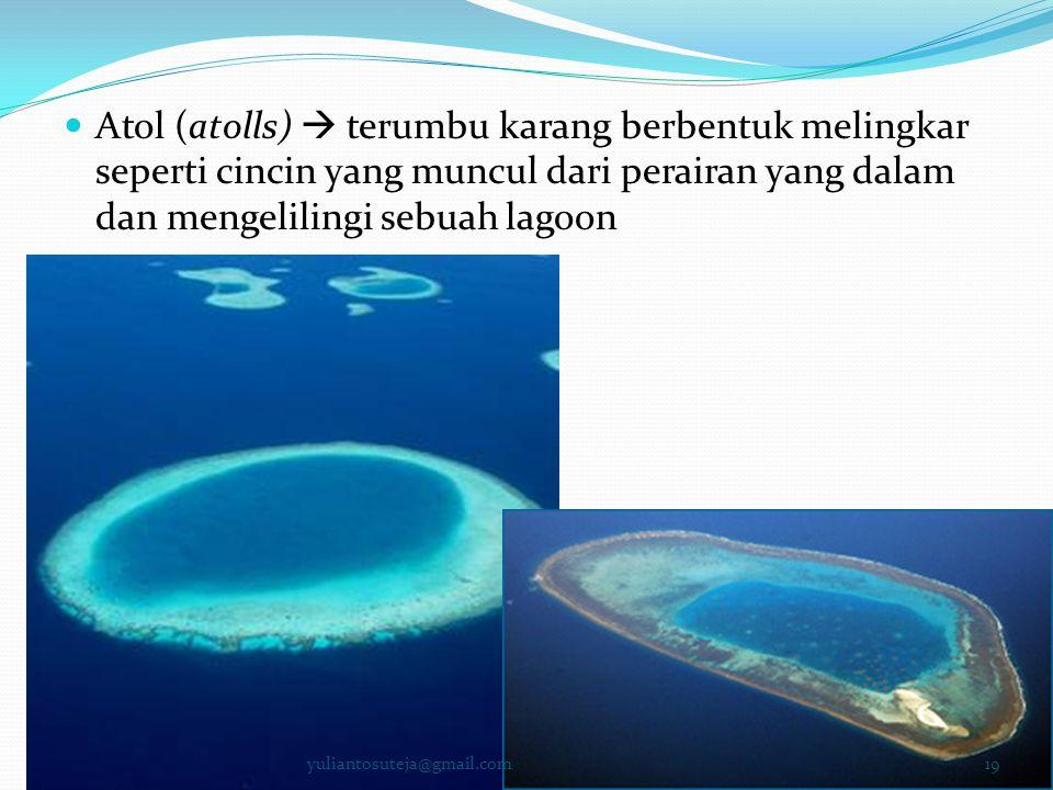 Atol (atolls)  terumbu karang berbentuk melingkar seperti cincin yang muncul dari perairan yang dalam dan mengelilingi sebuah lagoon