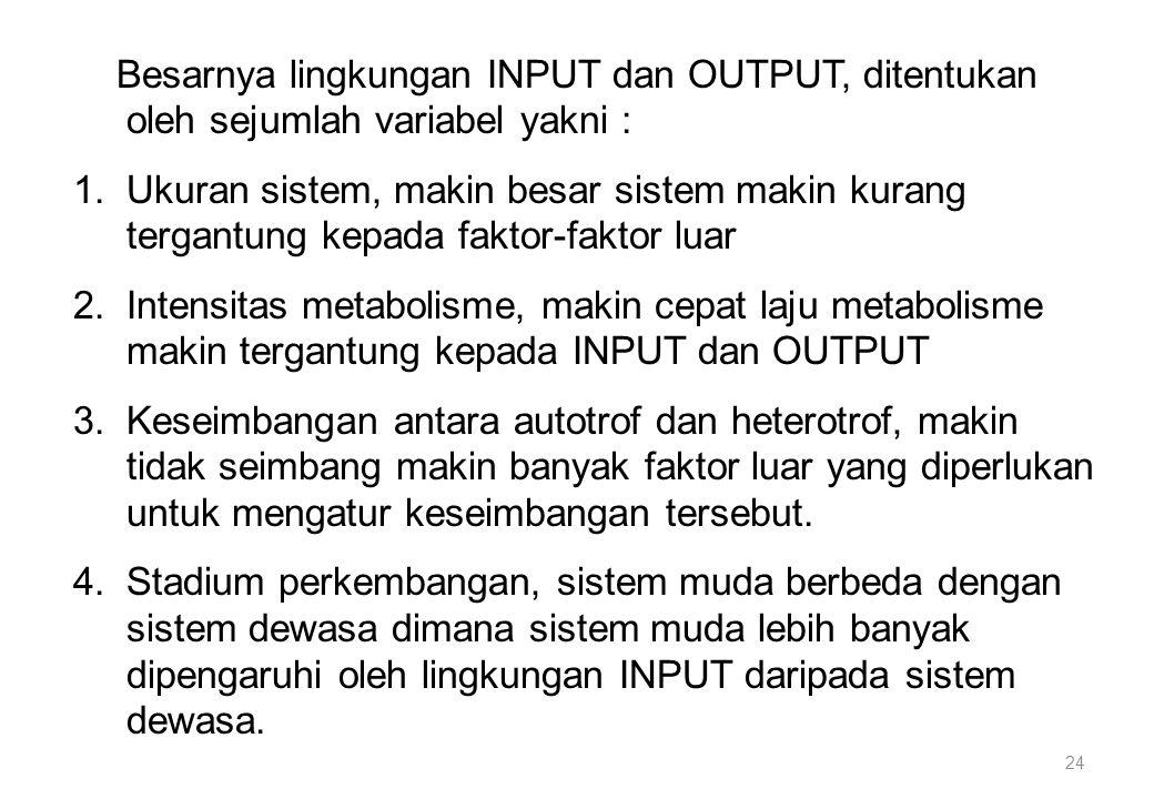 Besarnya lingkungan INPUT dan OUTPUT, ditentukan oleh sejumlah variabel yakni :