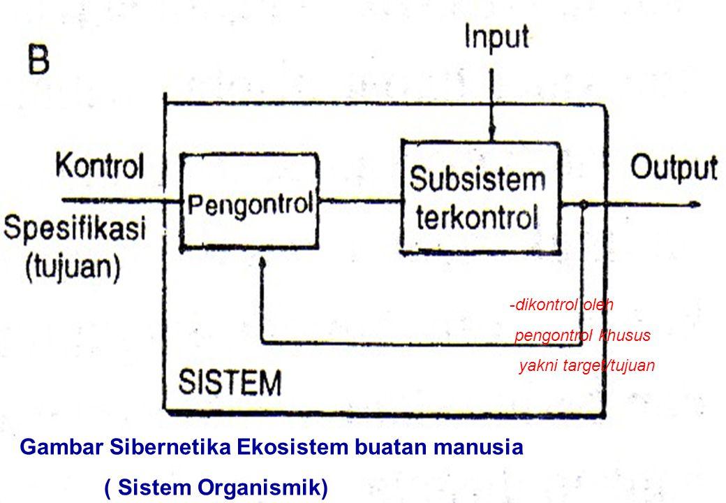 Gambar Sibernetika Ekosistem buatan manusia ( Sistem Organismik)