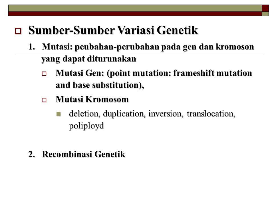 Sumber-Sumber Variasi Genetik
