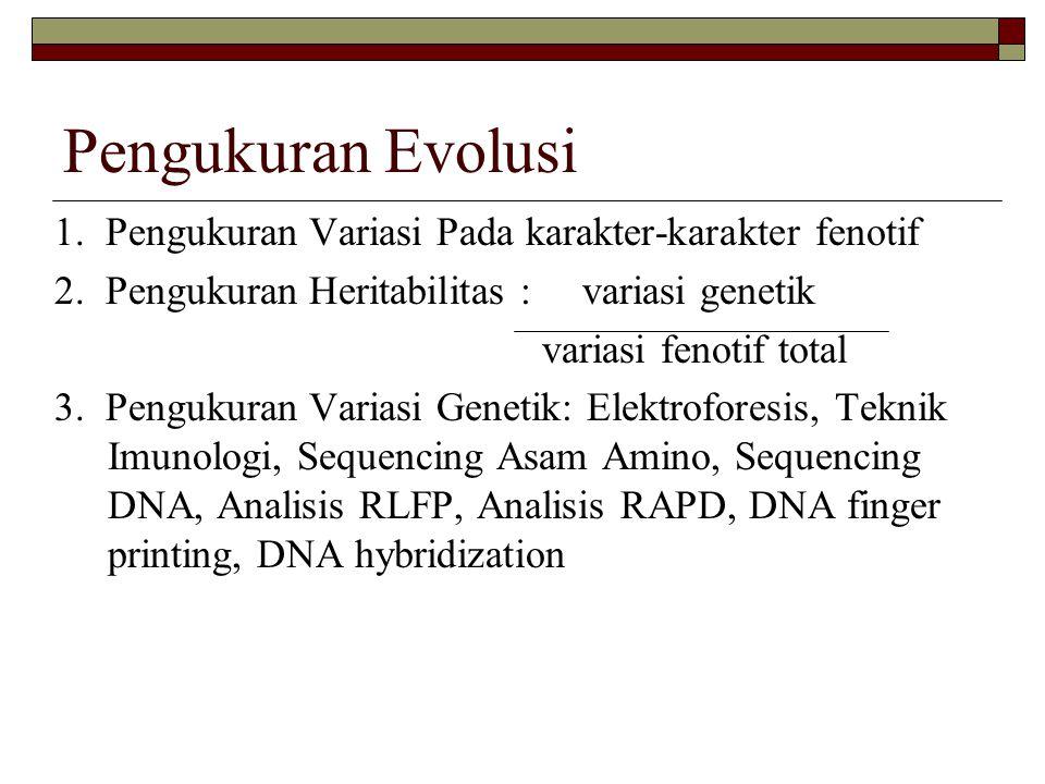 Pengukuran Evolusi 1. Pengukuran Variasi Pada karakter-karakter fenotif. 2. Pengukuran Heritabilitas : variasi genetik.