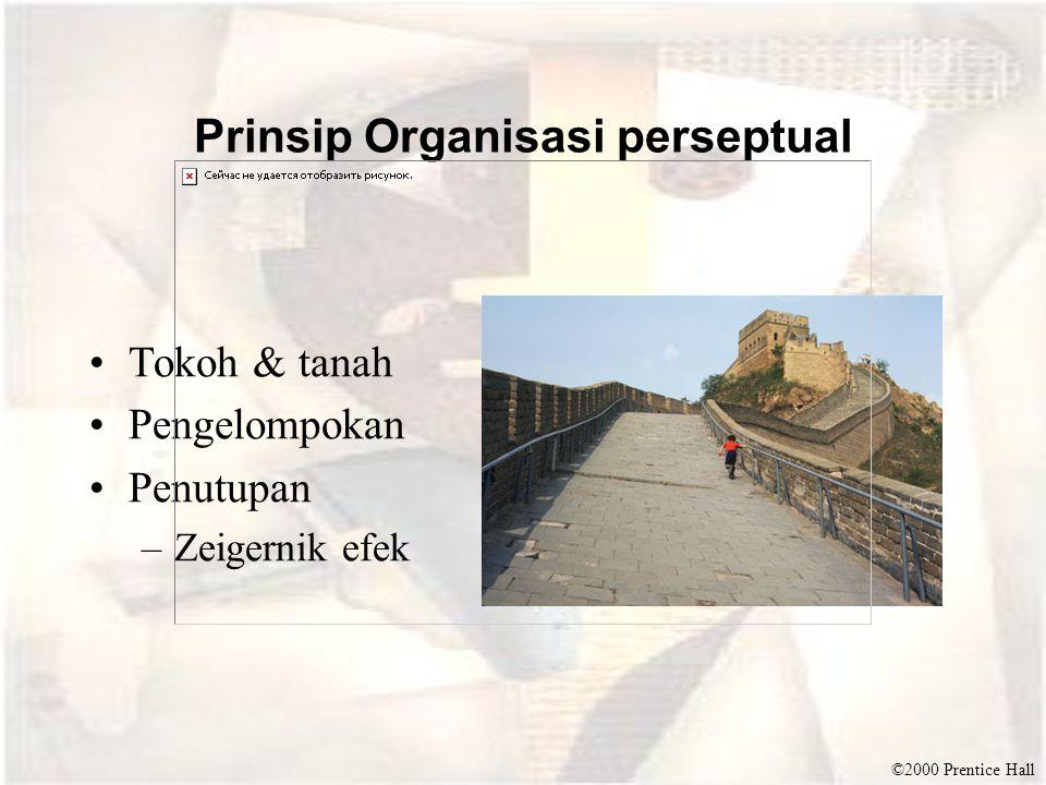 Prinsip Organisasi perseptual