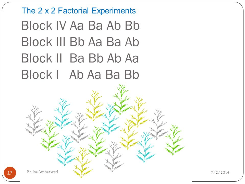 The 2 x 2 Factorial Experiments