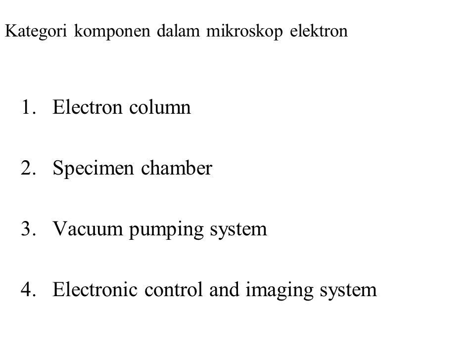 Kategori komponen dalam mikroskop elektron