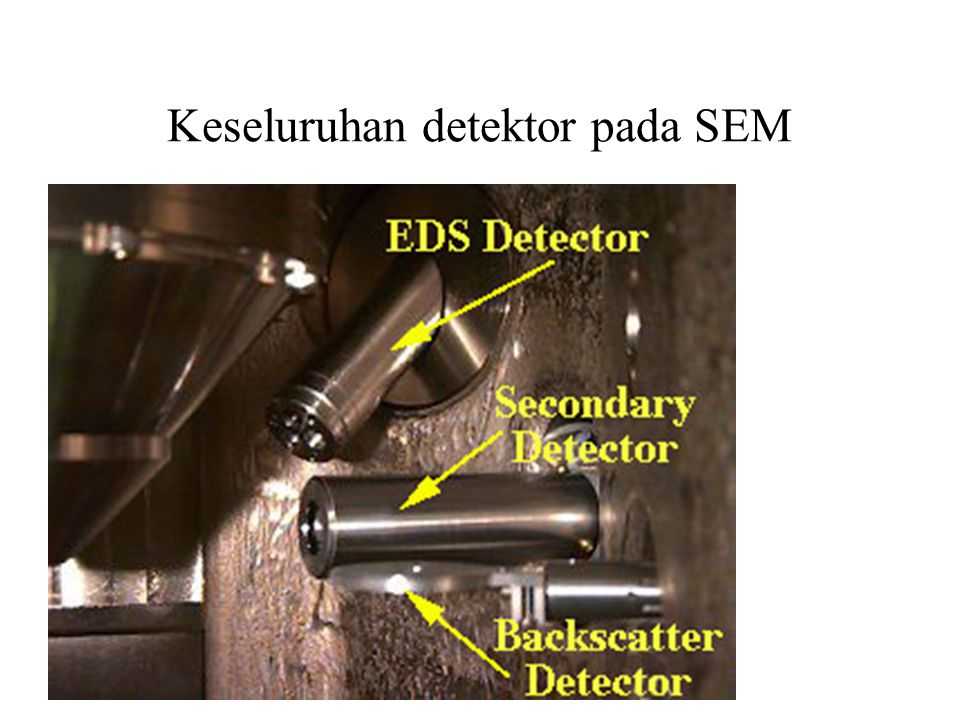 Keseluruhan detektor pada SEM