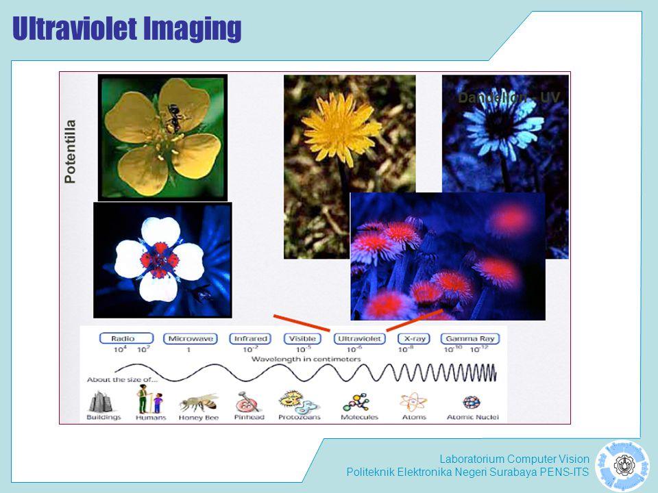 Ultraviolet Imaging
