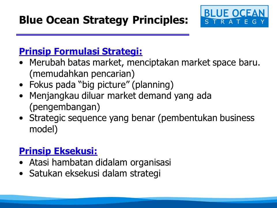 Blue Ocean Strategy Principles: