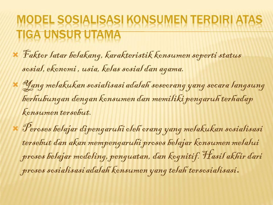 Model Sosialisasi Konsumen terdiri atas tiga Unsur Utama