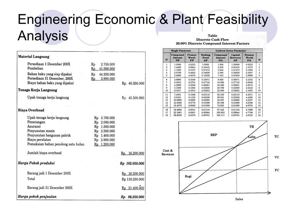 Engineering Economic & Plant Feasibility Analysis