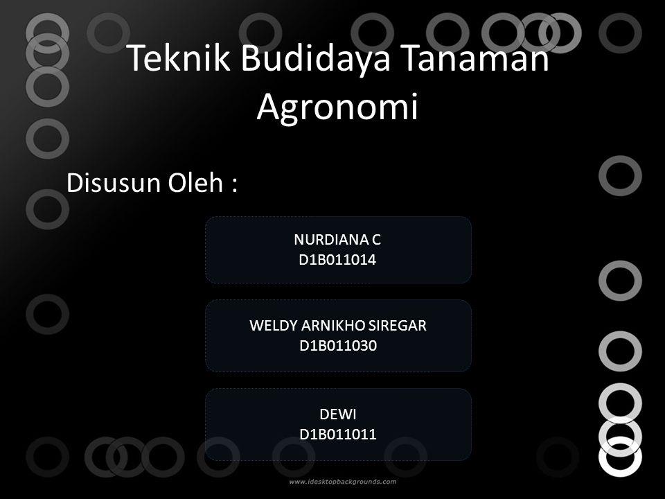 Teknik Budidaya Tanaman Agronomi