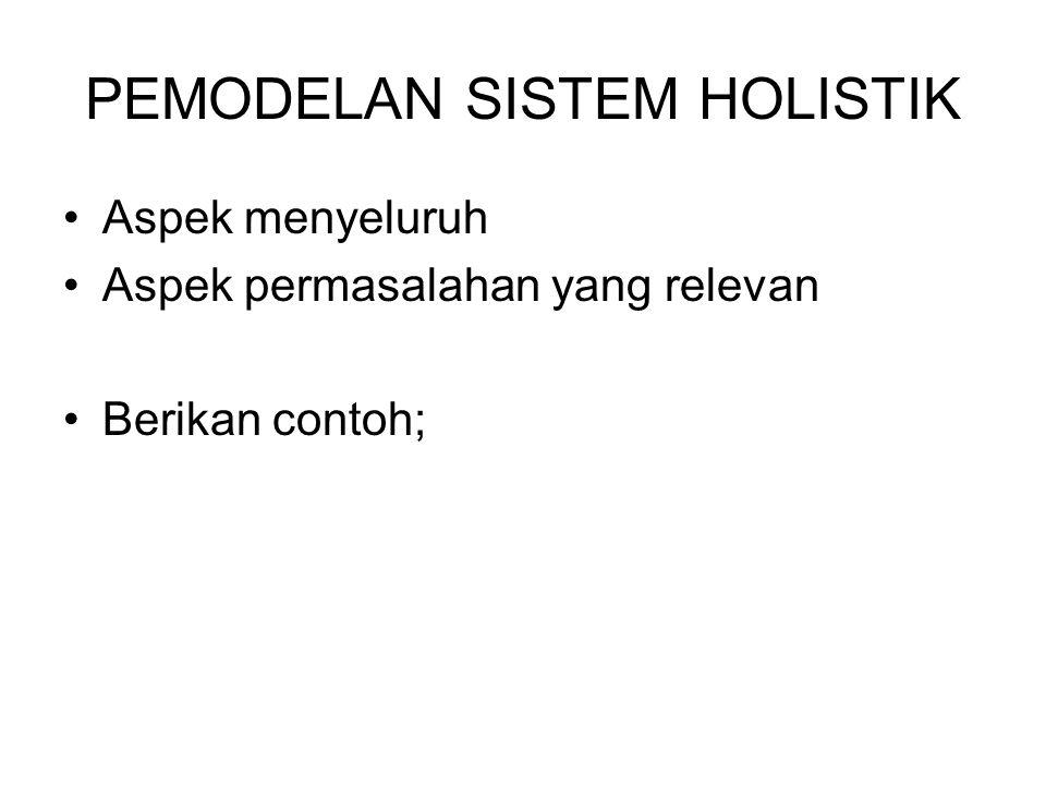 PEMODELAN SISTEM HOLISTIK