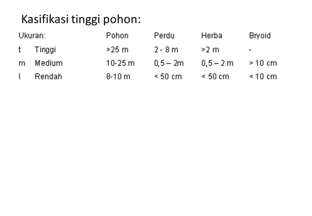 Kasifikasi tinggi pohon: