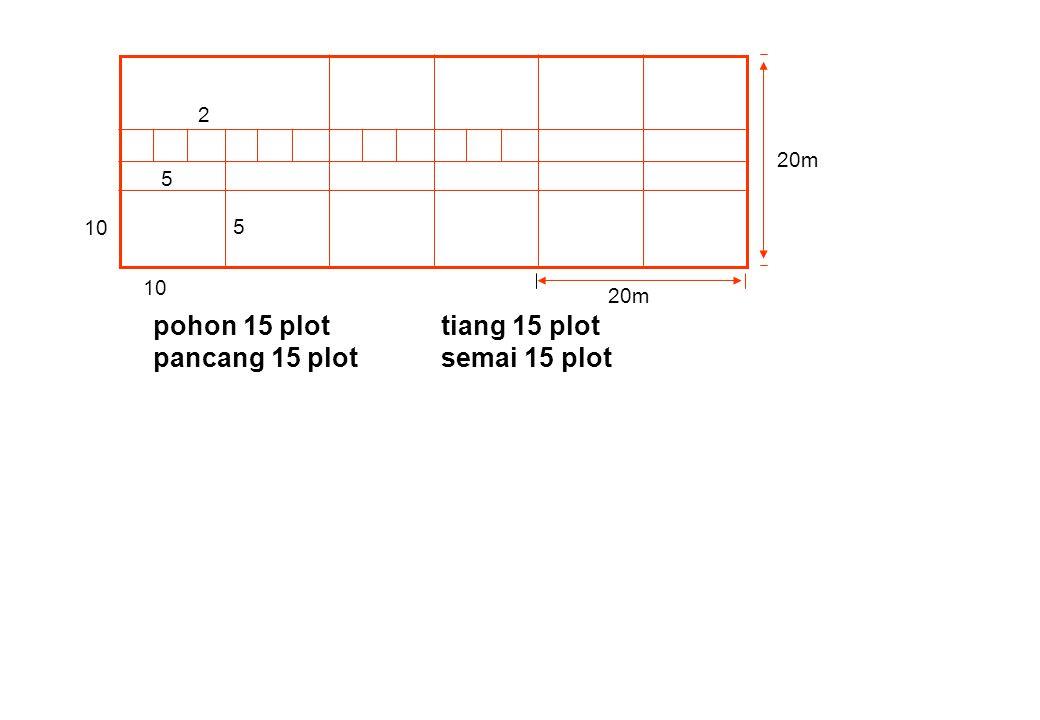 pancang 15 plot semai 15 plot