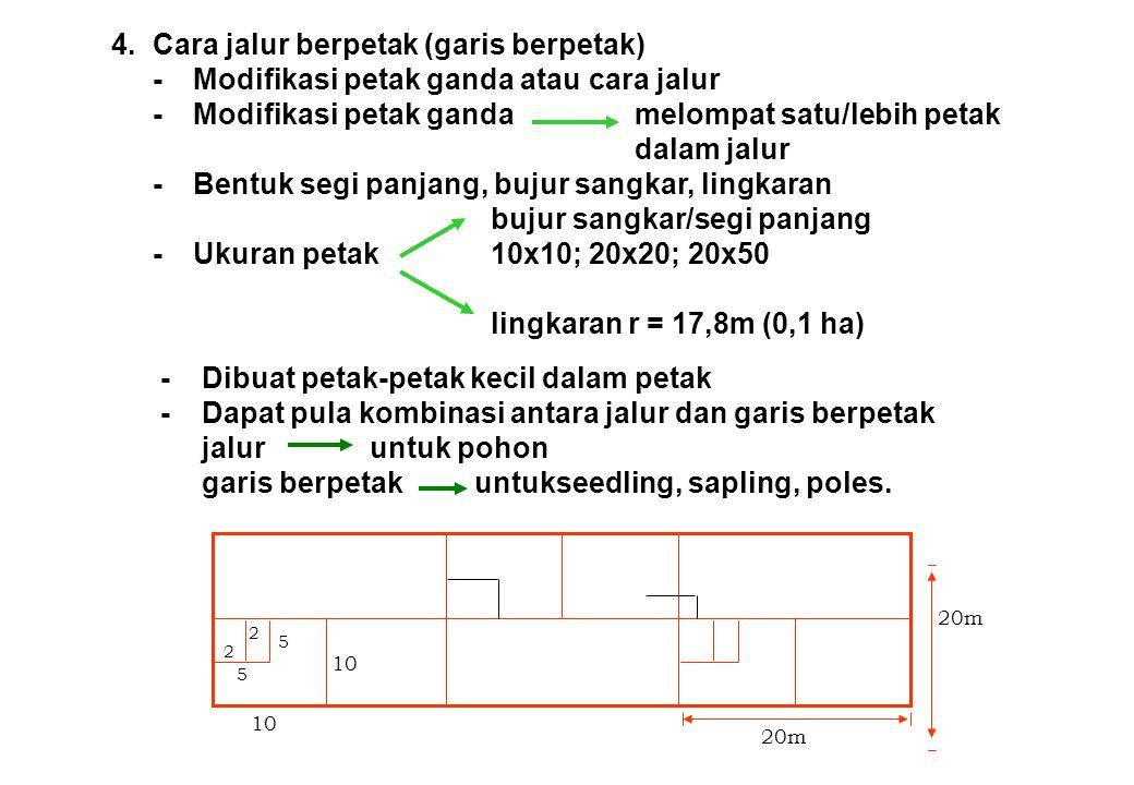 4. Cara jalur berpetak (garis berpetak)
