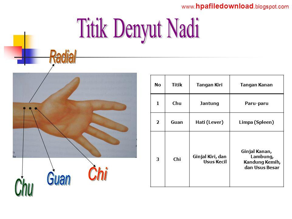 Titik Denyut Nadi Chu Radial Chi Guan www.hpafiledownload.blogspot.com