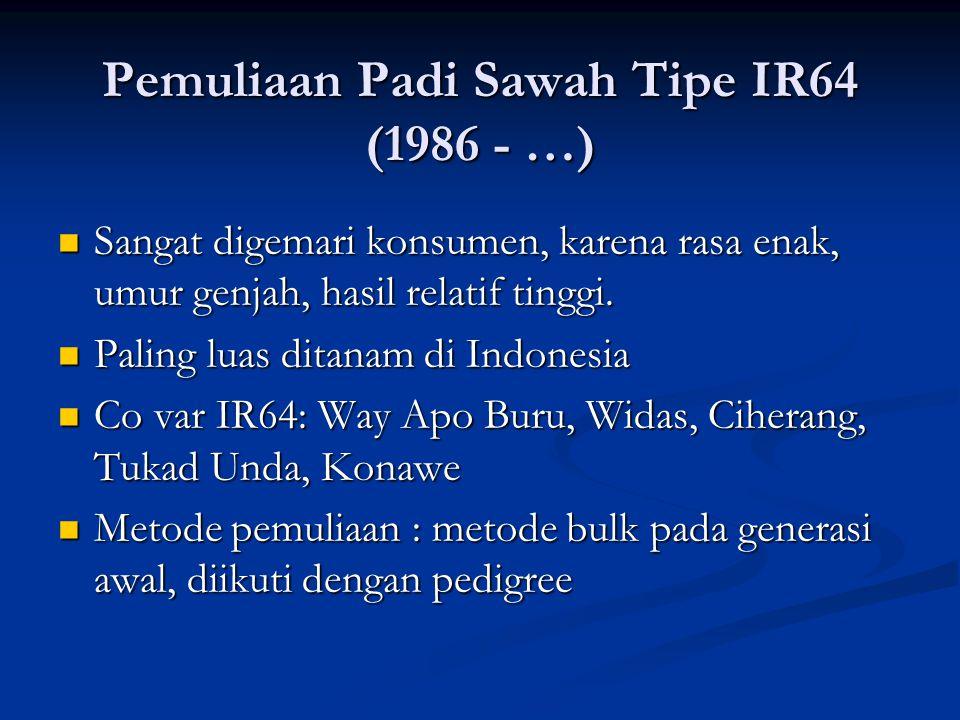 Pemuliaan Padi Sawah Tipe IR64 (1986 - …)