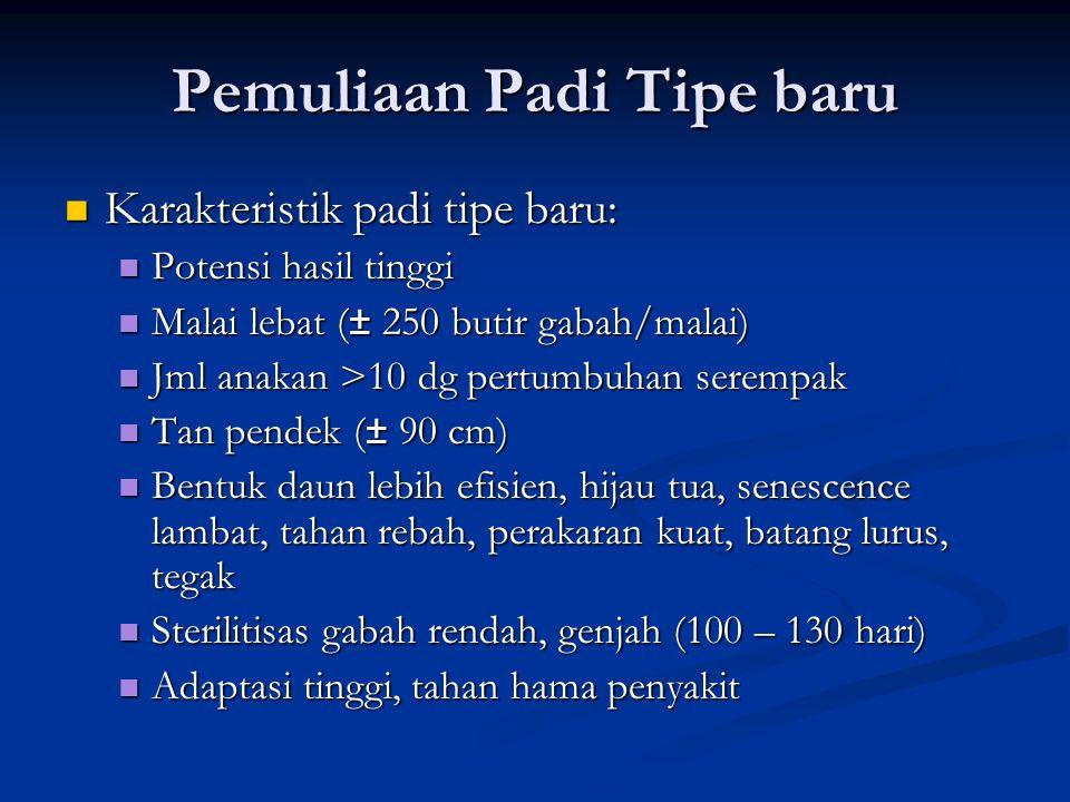 Pemuliaan Padi Tipe baru