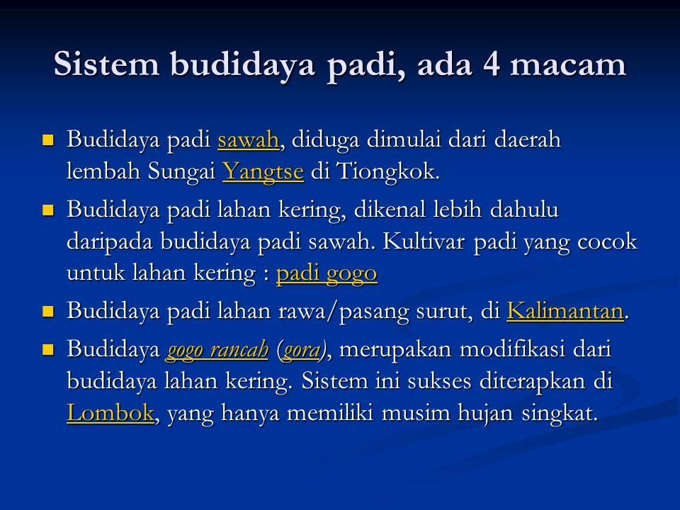 Sistem budidaya padi, ada 4 macam