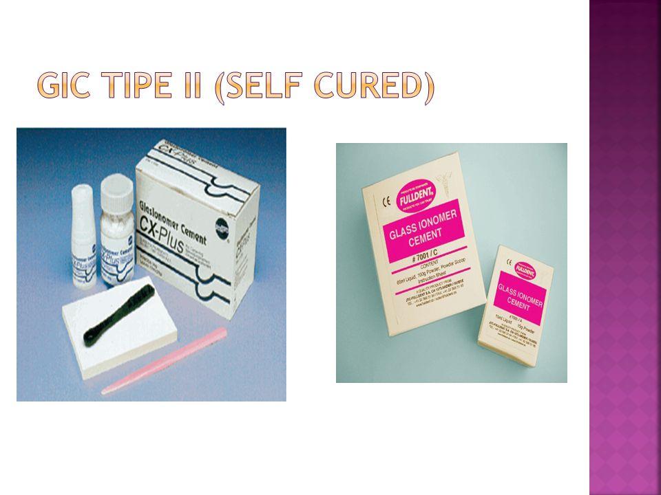 GIC TIPE II (self cured)