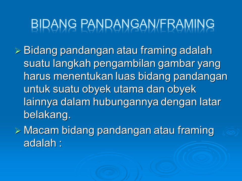 BIDANG PANDANGAN/FRAMING