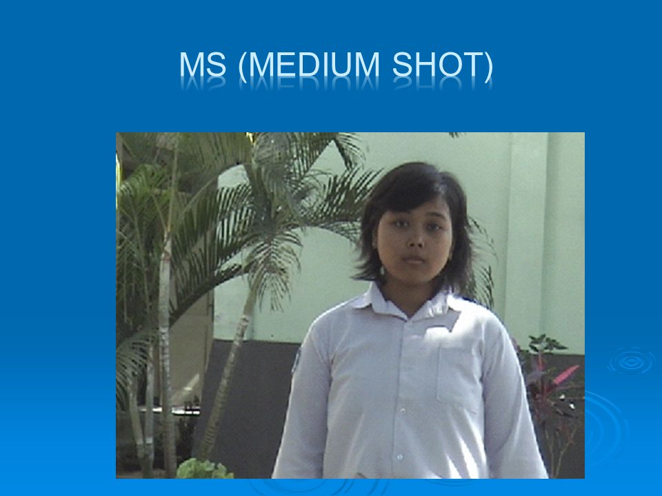 MS (MEDIUM SHOT)