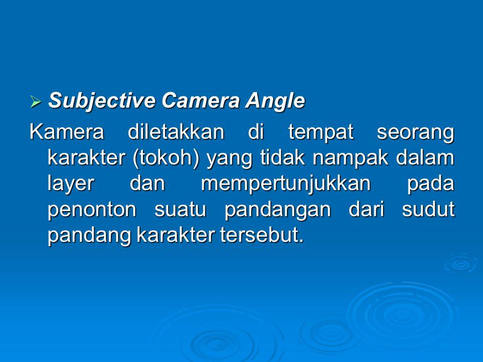 Subjective Camera Angle