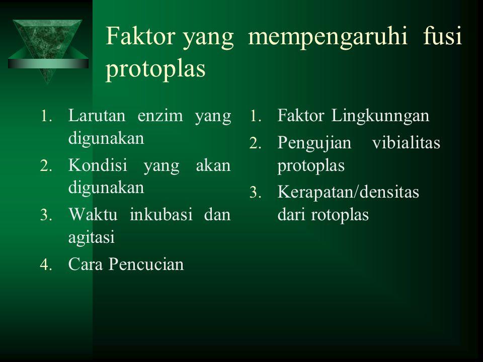 Faktor yang mempengaruhi fusi protoplas