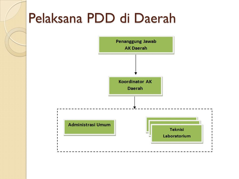 Pelaksana PDD di Daerah