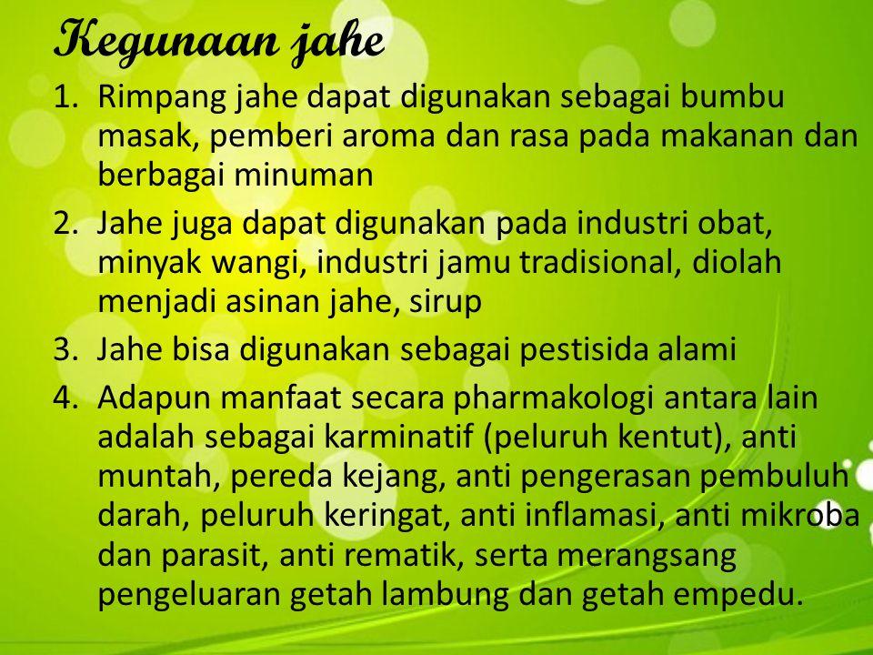 Kegunaan jahe Rimpang jahe dapat digunakan sebagai bumbu masak, pemberi aroma dan rasa pada makanan dan berbagai minuman.