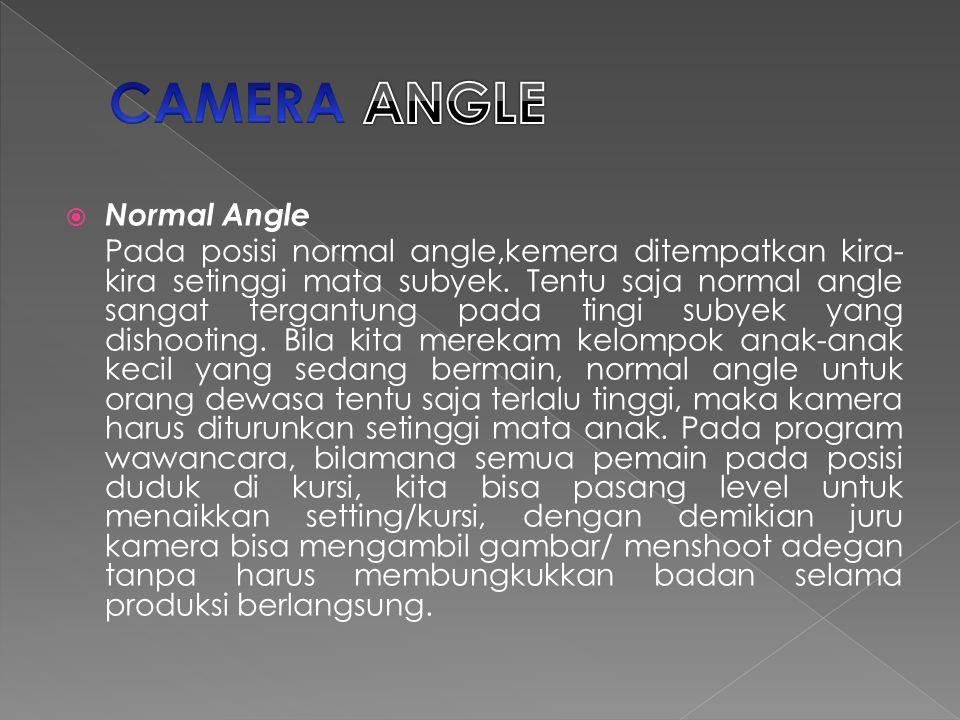 CAMERA ANGLE Normal Angle