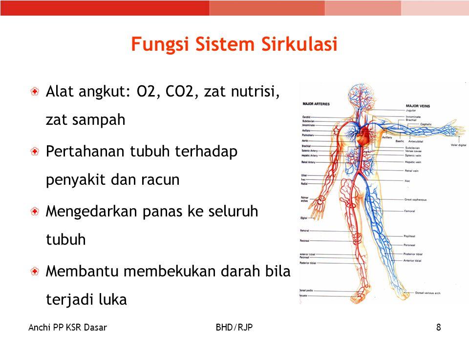 Fungsi Sistem Sirkulasi