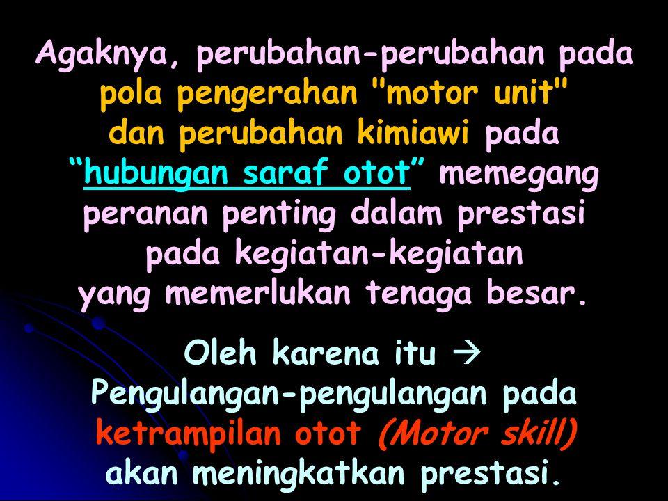 Agaknya, perubahan-perubahan pada pola pengerahan motor unit