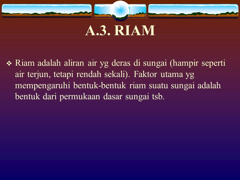 A.3. RIAM