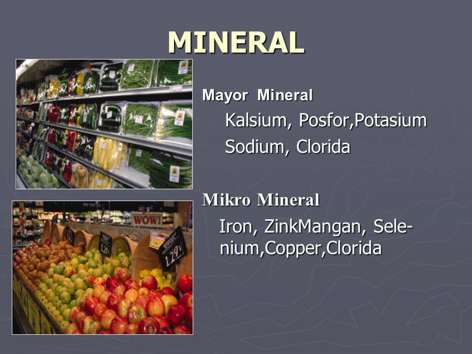 MINERAL Kalsium, Posfor,Potasium Sodium, Clorida Mikro Mineral