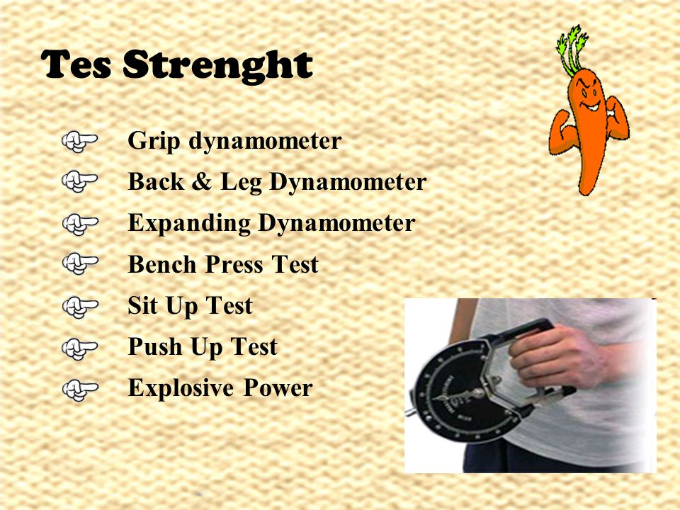 Tes Strenght Grip dynamometer Back & Leg Dynamometer