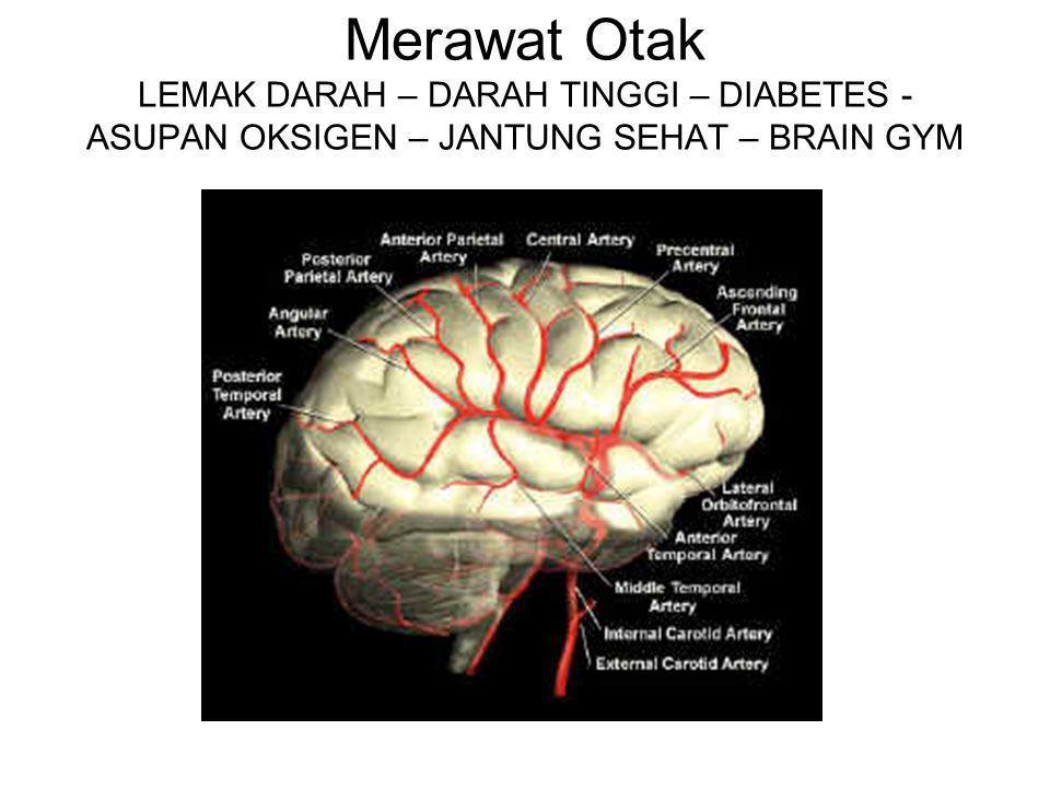 Merawat Otak LEMAK DARAH – DARAH TINGGI – DIABETES - ASUPAN OKSIGEN – JANTUNG SEHAT – BRAIN GYM
