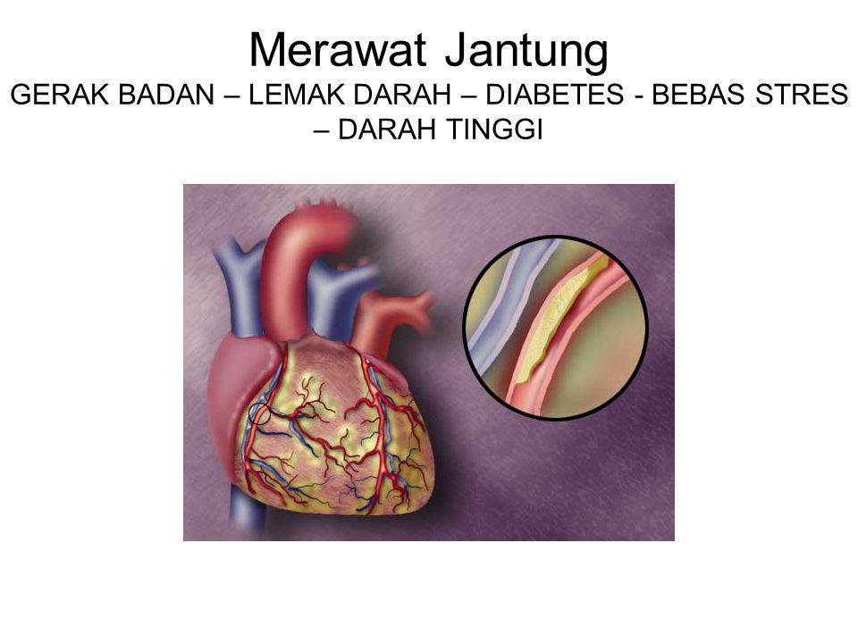 Merawat Jantung GERAK BADAN – LEMAK DARAH – DIABETES - BEBAS STRES – DARAH TINGGI