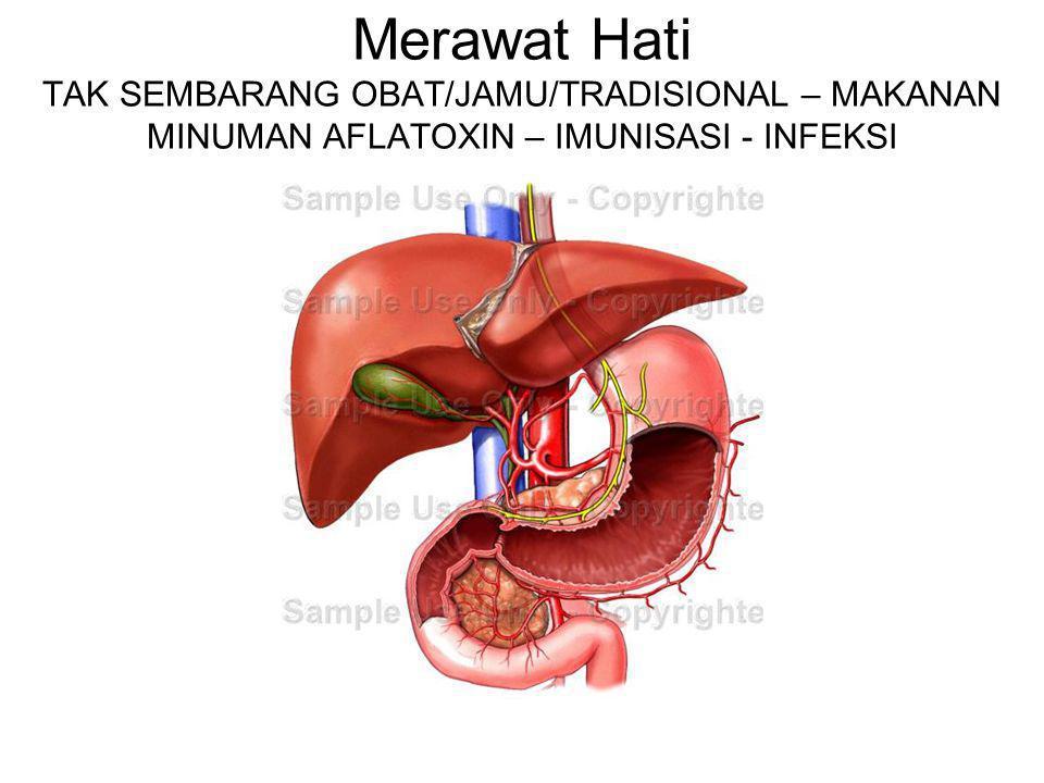 Merawat Hati TAK SEMBARANG OBAT/JAMU/TRADISIONAL – MAKANAN MINUMAN AFLATOXIN – IMUNISASI - INFEKSI