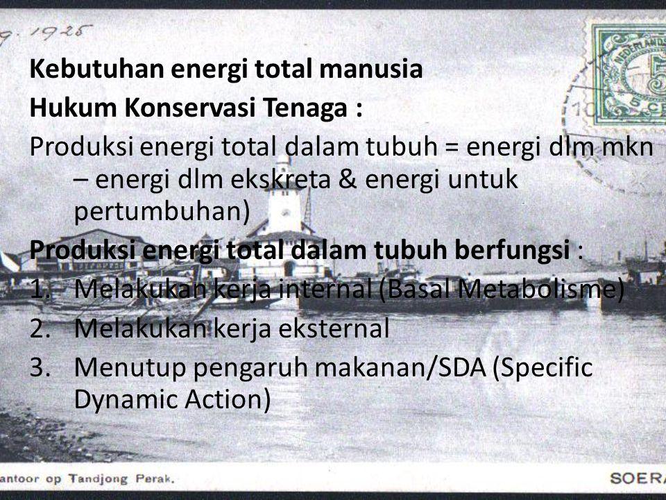 Kebutuhan energi total manusia
