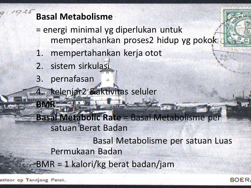 Basal Metabolisme = energi minimal yg diperlukan untuk mempertahankan proses2 hidup yg pokok. mempertahankan kerja otot.