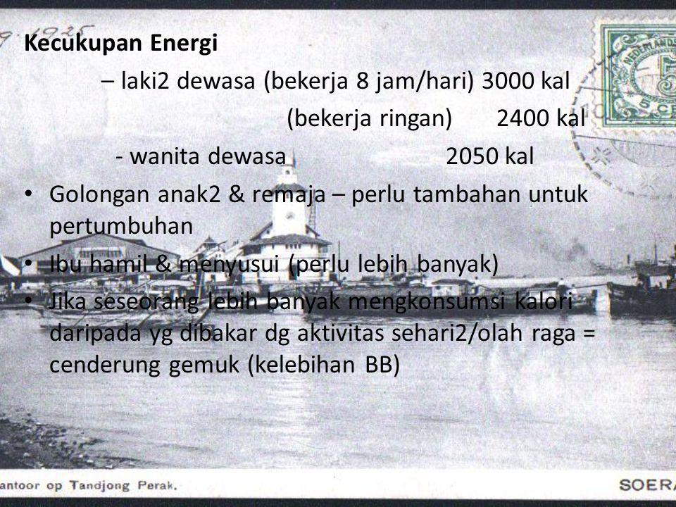 Kecukupan Energi – laki2 dewasa (bekerja 8 jam/hari) 3000 kal. (bekerja ringan) 2400 kal. - wanita dewasa 2050 kal.