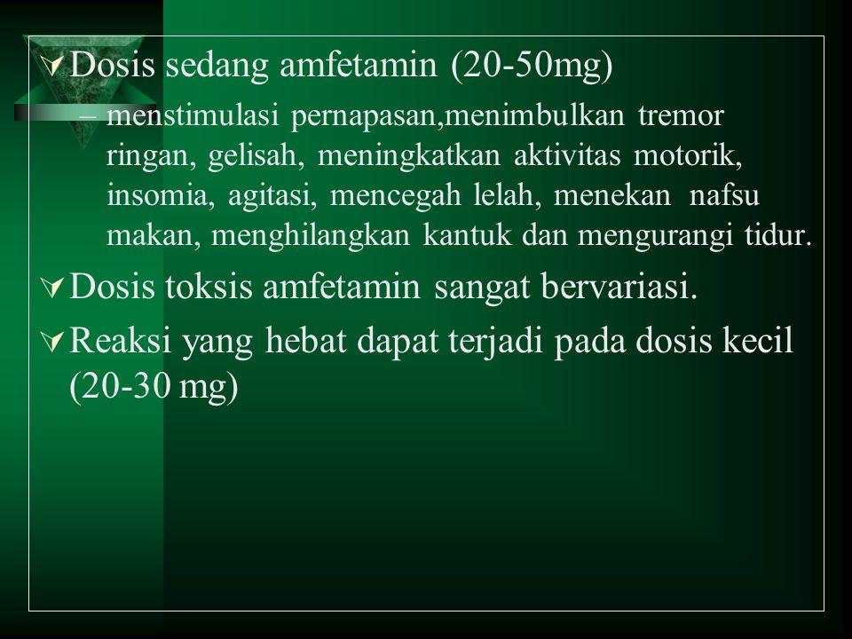 Dosis sedang amfetamin (20-50mg)