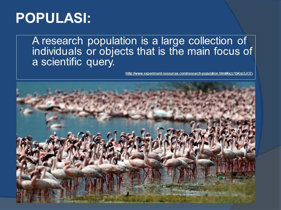 POPULASI: