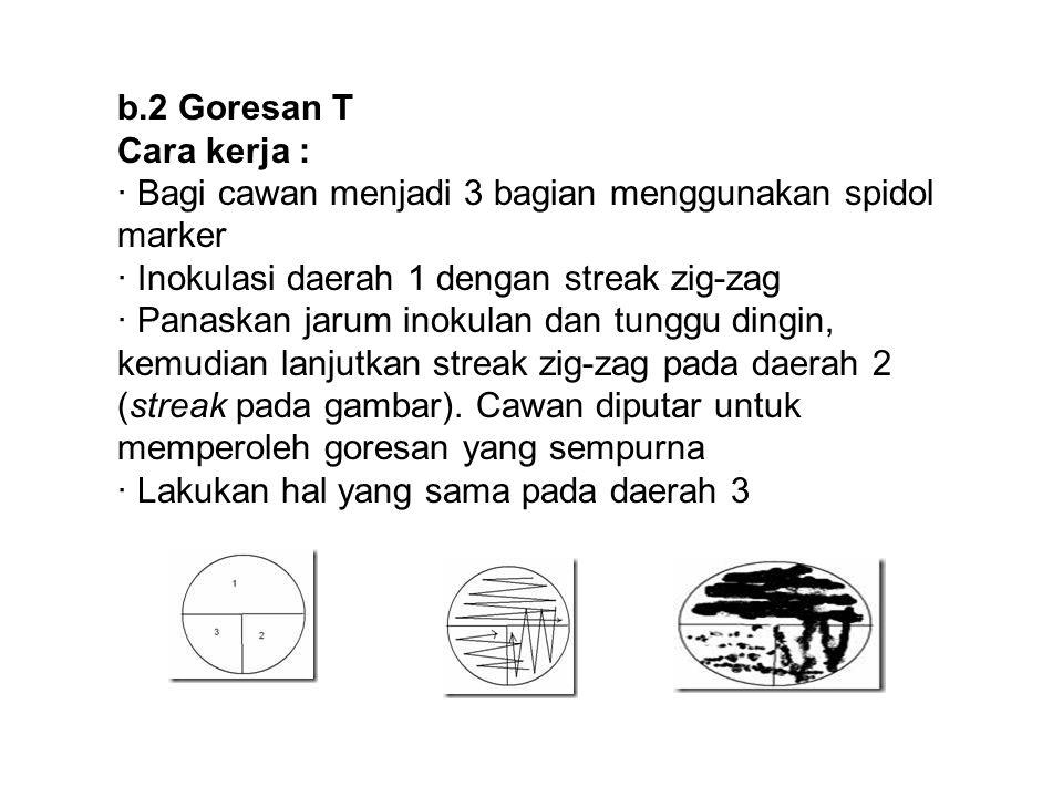 b.2 Goresan T Cara kerja : · Bagi cawan menjadi 3 bagian menggunakan spidol marker. · Inokulasi daerah 1 dengan streak zig-zag.
