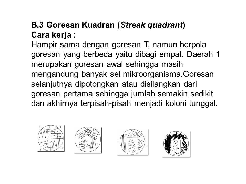 B.3 Goresan Kuadran (Streak quadrant)