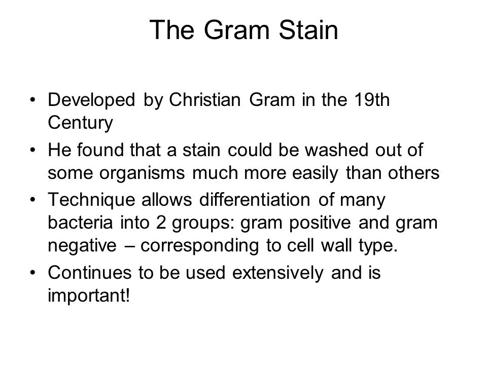 The Gram Stain Developed by Christian Gram in the 19th Century