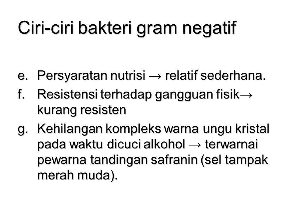 Ciri-ciri bakteri gram negatif