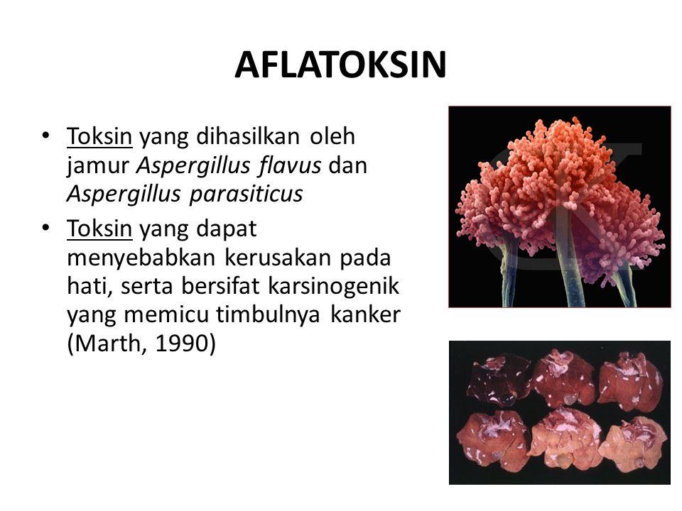 AFLATOKSIN Toksin yang dihasilkan oleh jamur Aspergillus flavus dan Aspergillus parasiticus.
