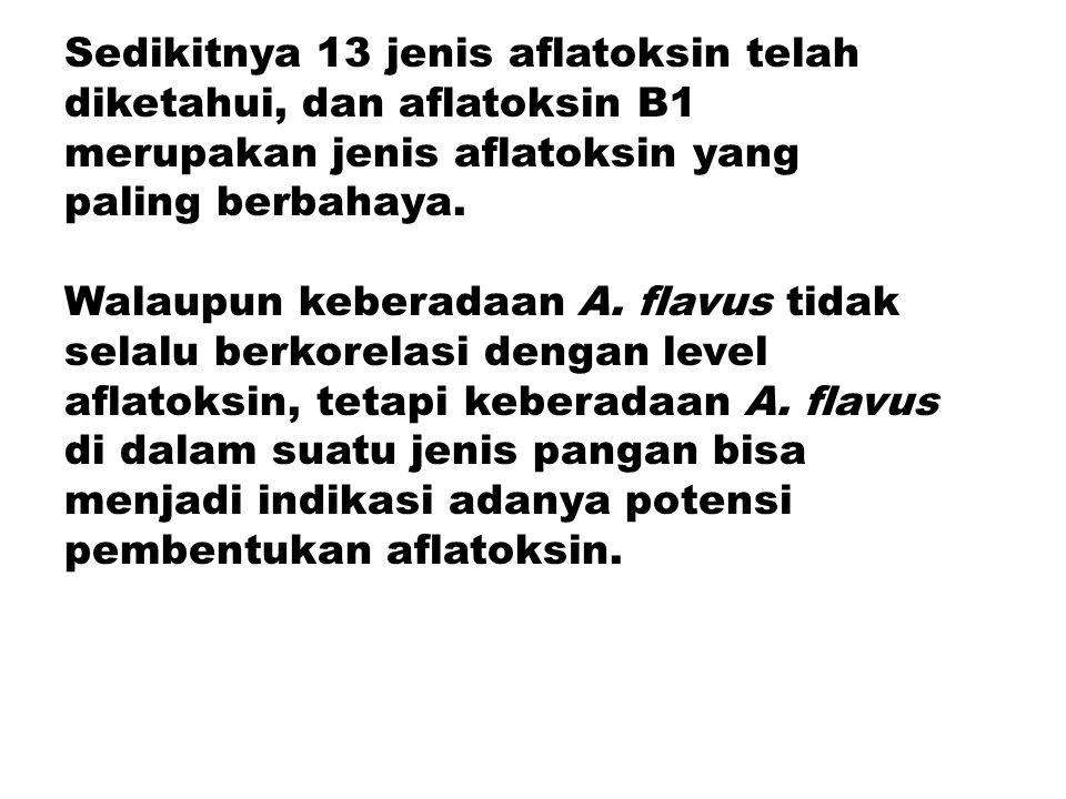 Sedikitnya 13 jenis aflatoksin telah diketahui, dan aflatoksin B1 merupakan jenis aflatoksin yang paling berbahaya.