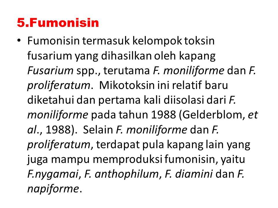 5.Fumonisin